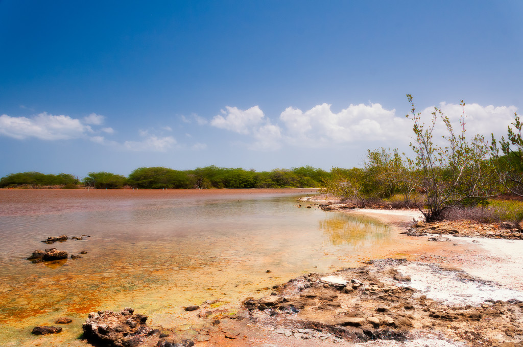 cabo-rojo-salt-flats-unit-national-wildlife-refuge-trail-lagoon