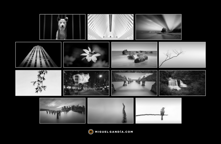 My Favorite Photos of 2017 in Black and White